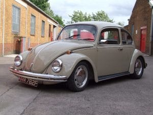Savannah Beige Beetle